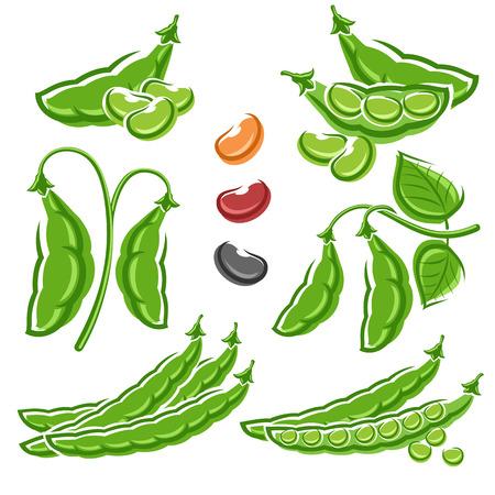 Beans set. Vector Vectores