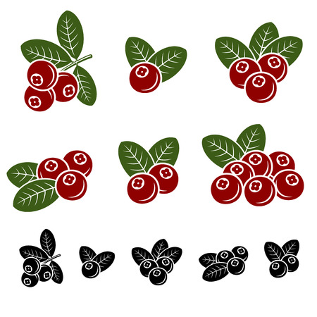 Cranberry-Set. Vektor