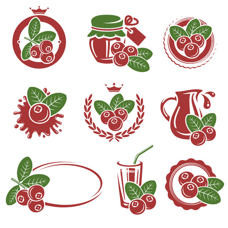 cranberry: Cranberry set. Vector Illustration