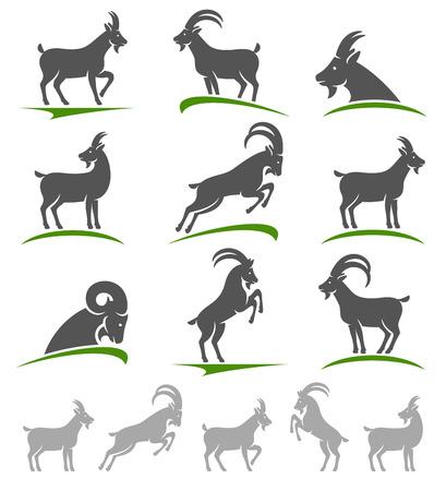 cabra: Cabra establecido. Vector Vectores