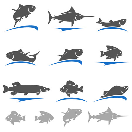 fish shop: Fish set. Vector