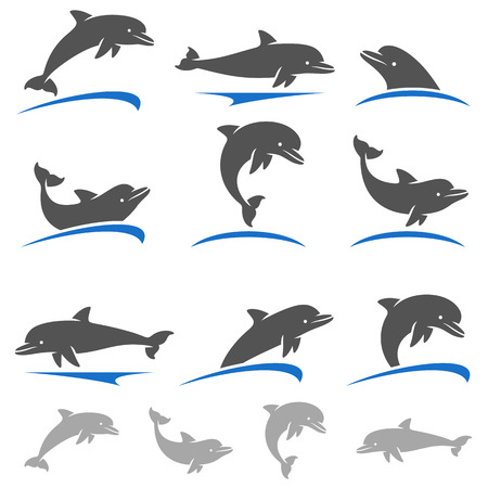 dauphin: Dolphins fixés. Vecteur
