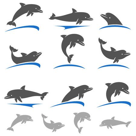 delfin: Ustawić delfiny. Wektor