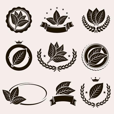 Étiquette et icônes de feuilles du tabac institué. Vecteur