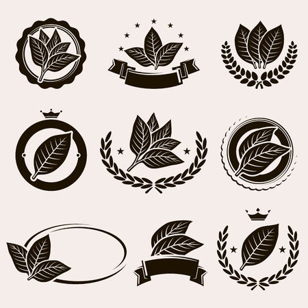 plants: Tobacco leaf label and icons set. Vector