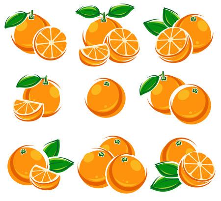 Oranges set. Vector Stock Illustratie
