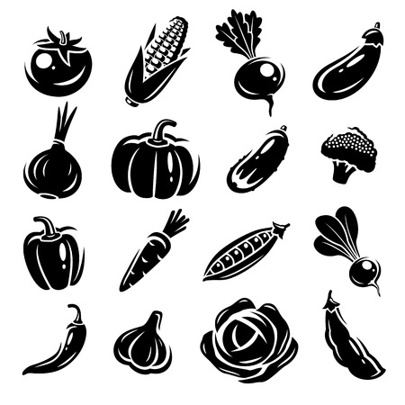 Collection of vegetables set. Vector illustration Vector