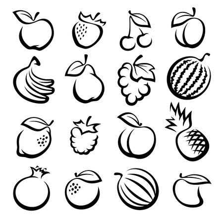 dibujos lineales: Colección de frutas establecido. Ilustración vectorial