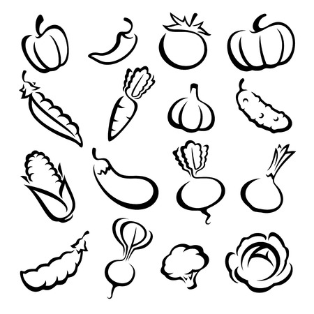 Collection of vegetables set. Vector illustration