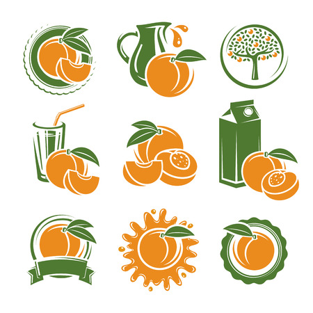 peach: Peach labels and elements set. Vector illustration