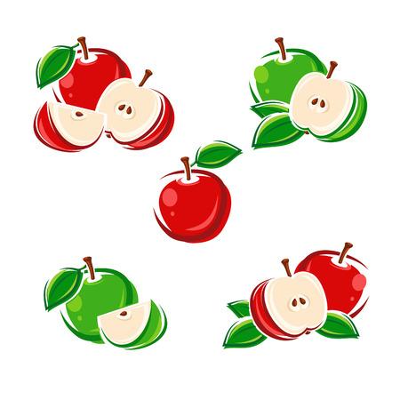 Apple set. Vector illustration color