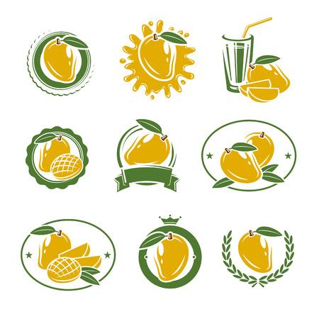 mango: Mango i elementy etykiety zestaw. Wektor