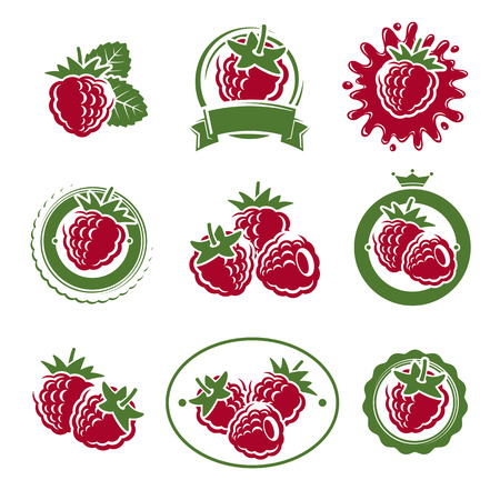 raspberries: Raspberry labels and elements set. Vector  collection
