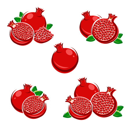 vector backgrounds: Pomegranate set. Vector Illustration