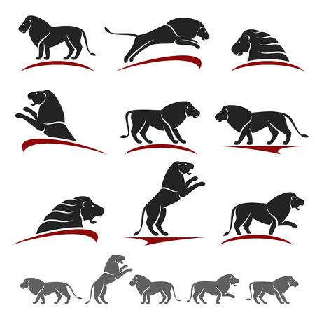 royal safari: Lion set. Vector