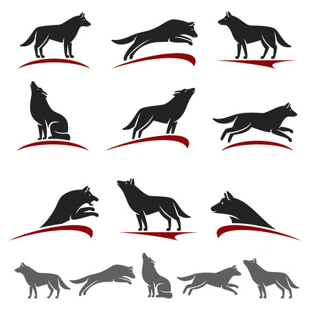 black and white wolf: Wolf set. Vector