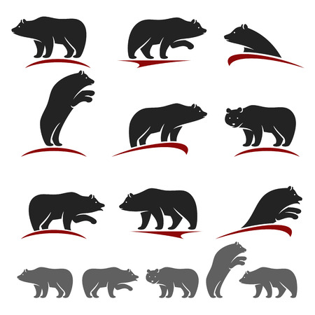 Bear set. Vector