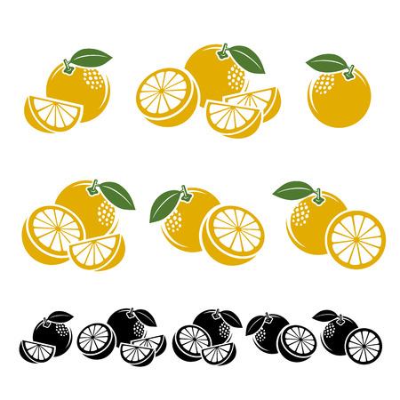 lime: Grapefruit set. Vector illustration fruit Illustration