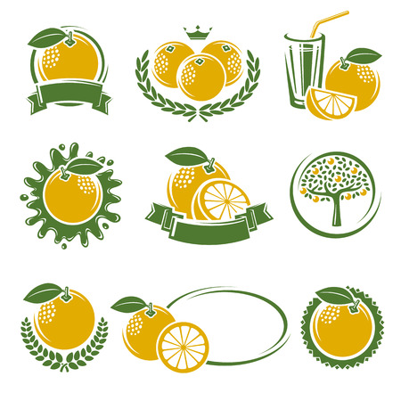 grapefruit: Grapefruit labels and elements set. Vector illustration
