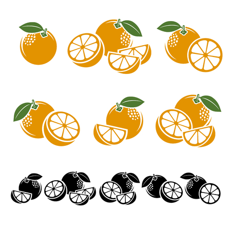 oranges: Oranges set. Vector illustration  fruit