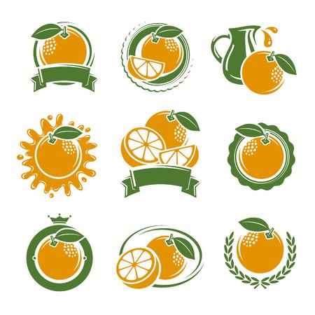 naranjas: Naranjas etiquetas y elementos establecidos. Ilustración vectorial
