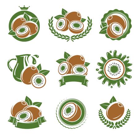 kiwi: Kiwi labels and elements set. Vector illustration