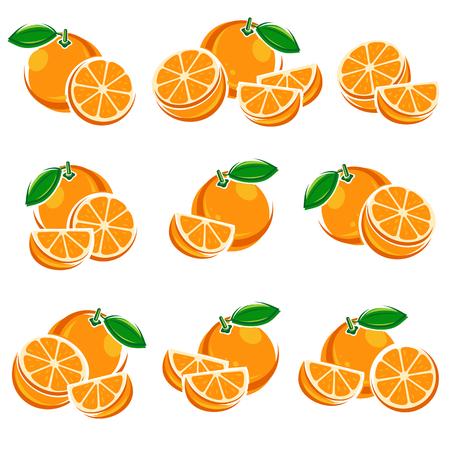 fruit orange: establece Naranjas fruta. ilustración vectorial