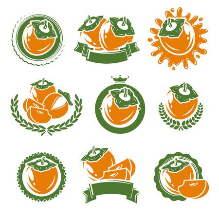 persimmon: etiquetas y elementos de caqui conjunto. ilustración vectorial