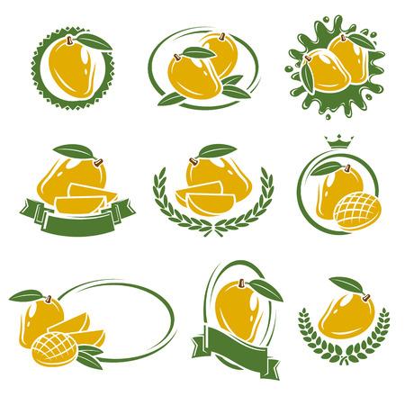 mango fruta: etiquetas de mango y elementos expuestos. ilustraci�n vectorial Vectores