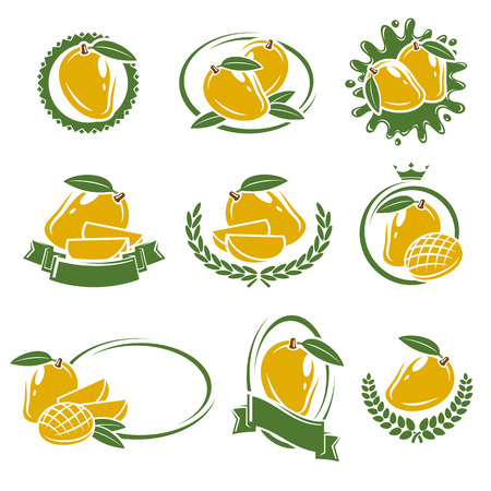 fruit drink: Mango labels and elements set. Vector illustration