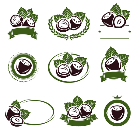 hazelnut: Hazelnut nuts labels and elements set. Vector illustration Illustration