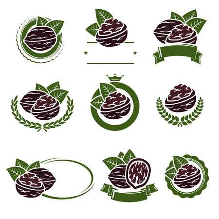 Walnut nuts labels and elements set. Vector illustration Ilustração