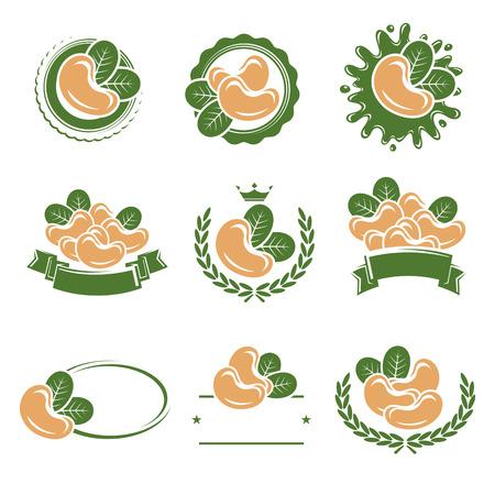 frutas deshidratadas: Etiquetas y elementos Anacardos establecen. Ilustración vectorial