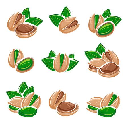 pistachios: Pistachio nuts set. Vector illustration Illustration