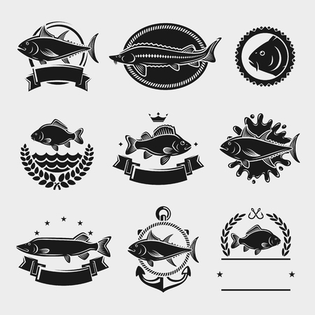 sturgeon: Fish stamps and labels set. Vector illustration