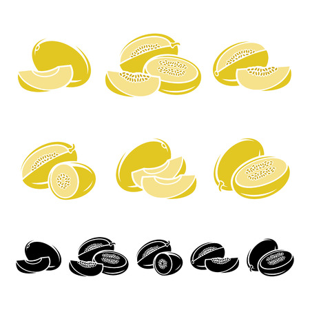 melon: Melon set. Vector fruit illustration