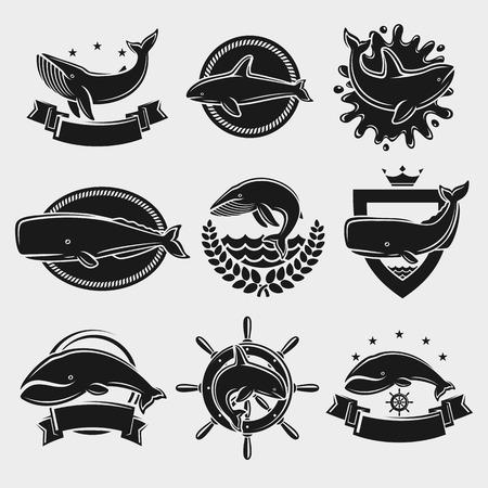 etiqueta de ballena y de conjunto de iconos. ilustración vectorial