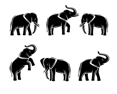 siluetas de elefantes: Conjunto aislado de elefante. vector animal