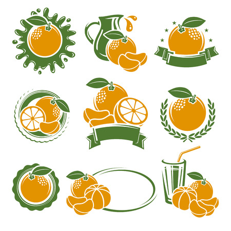 Mandarin set. Illustration isolated food joy page