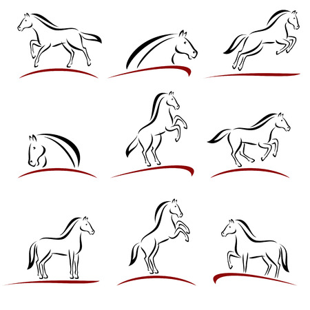 Collection horse set, edit size and color, vector