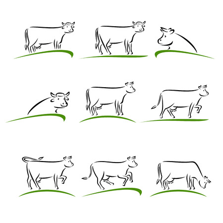 farming sign: Cow set. Vector illustration natural agriculture sign farming