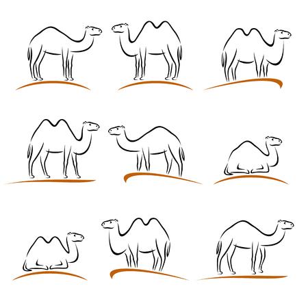 nomad: Camel set. Vector illustration symbol graphic shape travel
