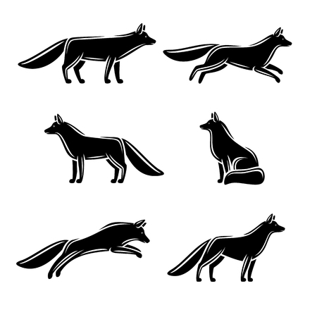 black fox: Fox set. Vector illustration tail background white red coyote style sign foxy wild