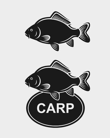 pez carpa: conjunto de la carpa. ilustración símbolo gráfico