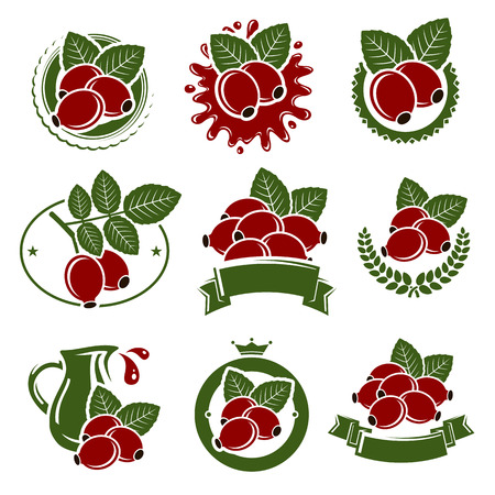 briar: Briar labels and elements set. Vector illustration