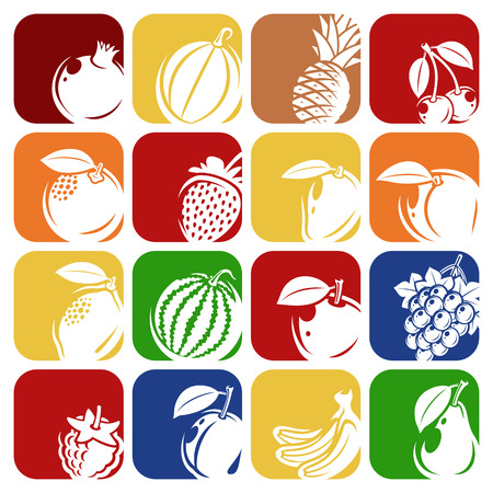 illustration collection: Collection of fruits set. Vector illustration