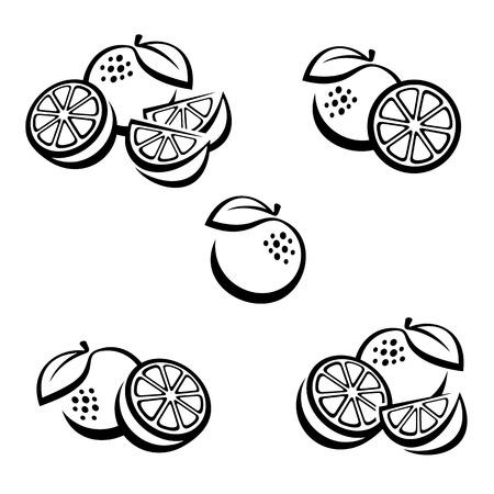 wedge: Oranges set. Vector Illustration