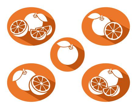 Oranges set Illustration