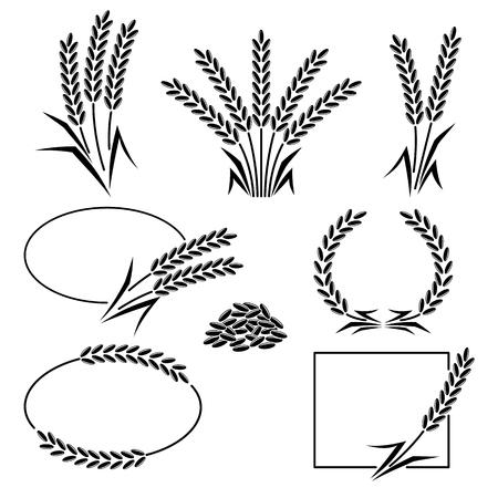 husks: Rice set. Vector