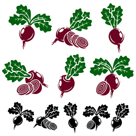 beet root: Beet set. Vector